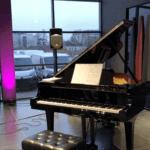 Realizacja oświetlenia i nagłośnienia premiery samochodu w salonie DS Store Kraków. Blue Light